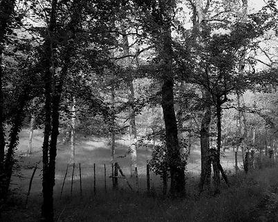 The Bouriane paths - 13
