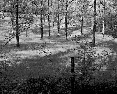 The Bouriane paths - 4