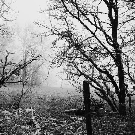 Quercy In Winter -6