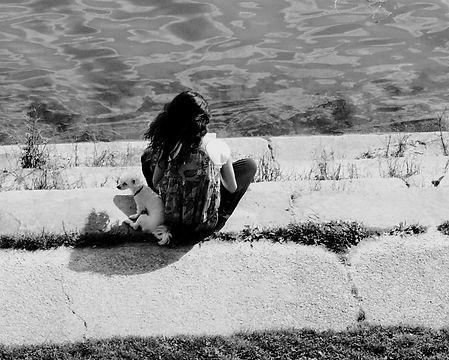 Un chien à l'ombre