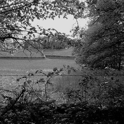 Quercy landscapes #9