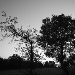 Les Causses de Quercy