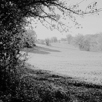 Quercy landscapes #18