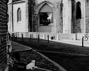 Le chien et le pélerin