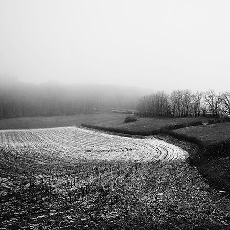 Quercy In Winter -2