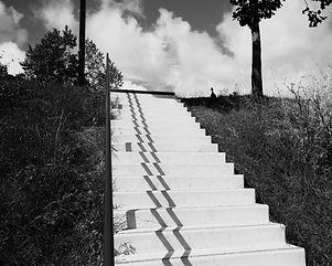 Le canard et l'escalier