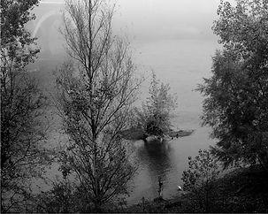 Aigrette sur Garonne