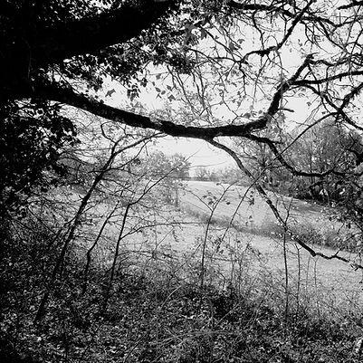 Quercy landscapes #23