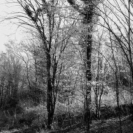 Quercy landscapes #15
