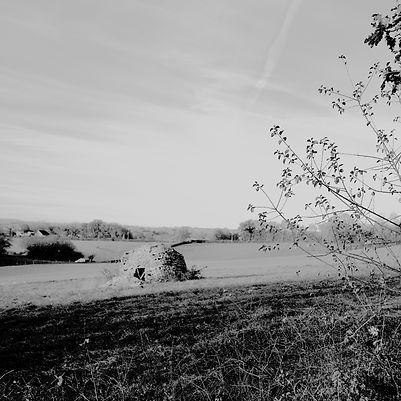 Quercy landscapes #16