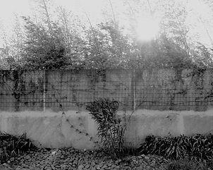 Le mur de Grandmont