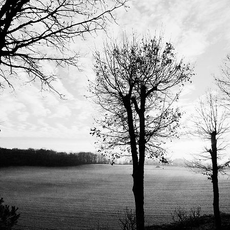 Quercy In Winter -5