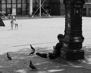 Les pigeons de Beaubourg