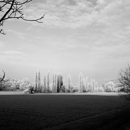Quercy In Winter -26