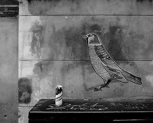 L'oiseau fait le mur