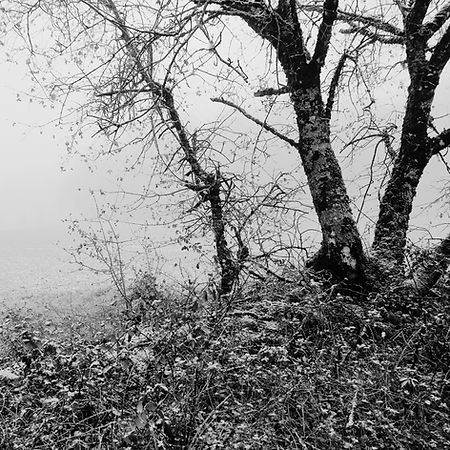 Quercy In Winter -9