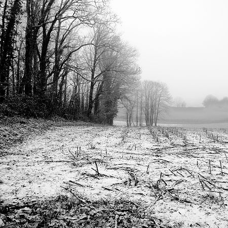 Quercy In Winter -21