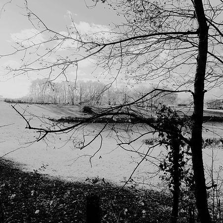 Quercy landscapes #19