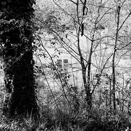 Spring in Quercy - 9