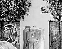 graphiti tree and trash