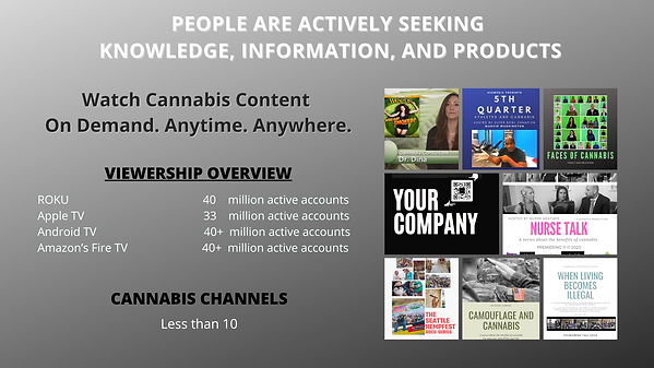 NP 2020 Channel Advertising Presentation