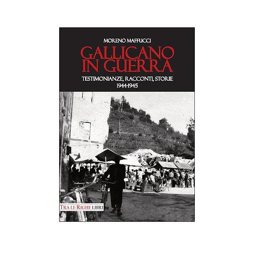 Gallicano in guerra. Testimonianze, racconti, storie 1944-1945