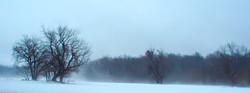 Northern Neck Snow