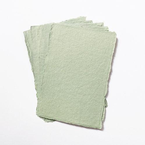 10x15cm 尤加利綠水木紙  |  Eucalyptus Green Somood paper