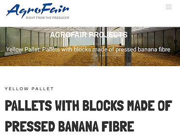 Yellow-Psllet_Agrofair_Project.png