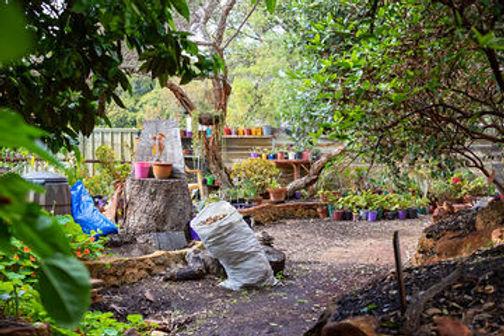 garden scene.jpg