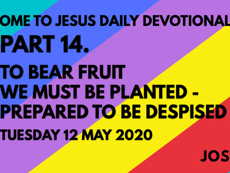 PART 14 – TO BEAR FRUIT WE MUST BE PLANTED – PREPARED TO BE DESPISED (12/5/20)