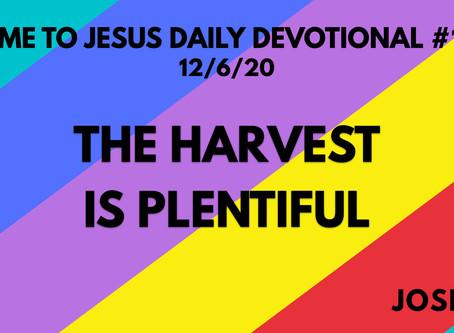 #125 – THE HARVEST IS PLENTIFUL (12/6/20)