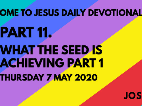 PART 11 – WHAT THE SEED IS ACHIEVING PART 1 (7/5/20)