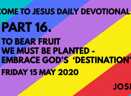 PART 16 – TO BEAR FRUIT WE MUST BE PLANTED – EMBRACE GOD'S DESTINATION (15/5/20)
