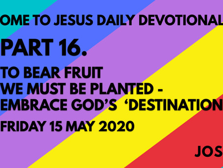 PART 16 – TO BEAR FRUIT WE MUST BE PLANTED – EMBRACE GOD'S DESTINATION (15/5/20)
