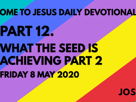 PART 12 – WHAT THE SEED IS ACHIEVING PART 2 (8/5/20)