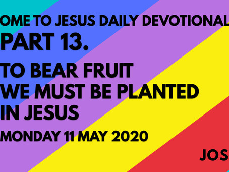 PART 13 – TO BEAR FRUIT WE MUST BE PLANTED IN JESUS (11/5/20)