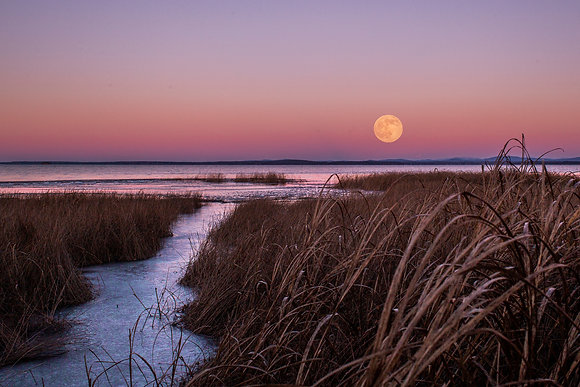 Cold Moon | December 29, 2020