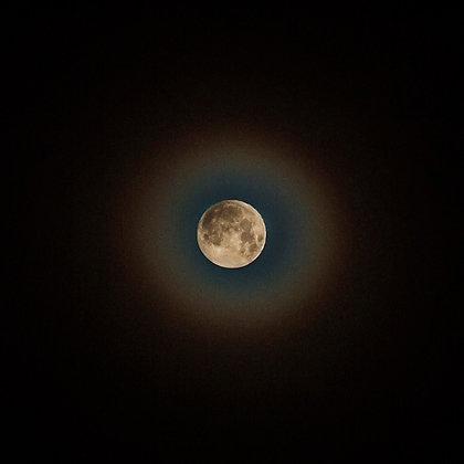 Wolf Moon | January 2018