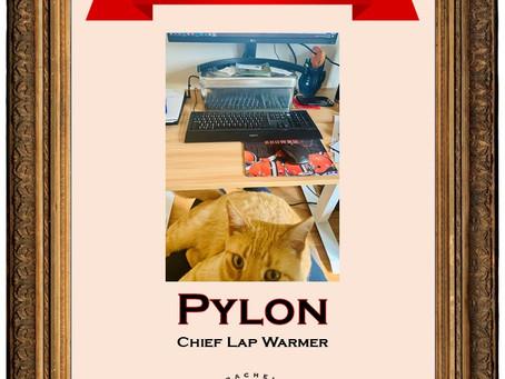 June 2020 Employee of the Month: Pylon
