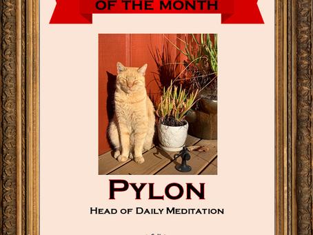 December Employee of the Month: Pylon