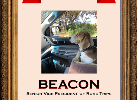 We are proud to announce our September 2020 Employee of the Month: Beacon