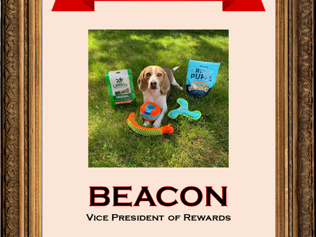 May 2020 Employee of the Month: Beacon
