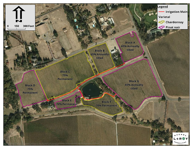 2020-06-07 Sample Vineyard Infrastructur