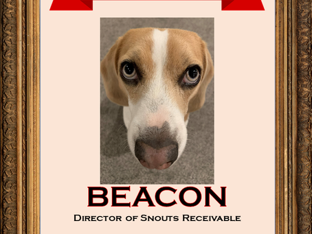 July 2020 Employee of the Month: Beacon