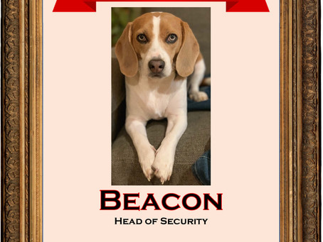 March 2020 Employee of the Month: Beacon