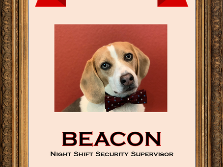November Employee of the Month: Beacon