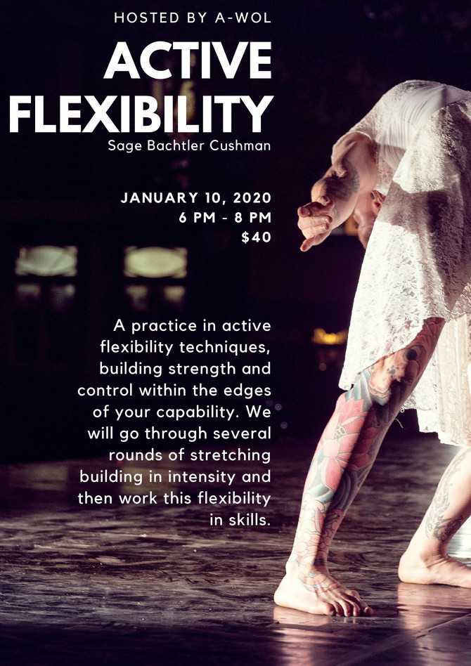 Come join in! Sage's Active Flexibility workshop @ A-WOL in Portland OR,  January 10th 6-8 pm