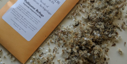 Pollinator Refuge Wildflower Seed Mix