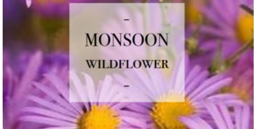 Monsoon Wildflower Seed Mix